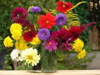 Доставка цветов, как способ выразить свое восхищение и оказать внимание (фото)